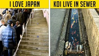 Download Photos That Prove Japan Is Different From The Rest Of The World Video
