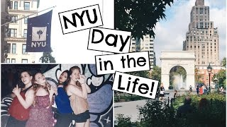 Download A Day in the Life of an NYU Student 2016! Video