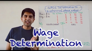 Download Wage Determination in a Perfectly Competitive Labour Market Video