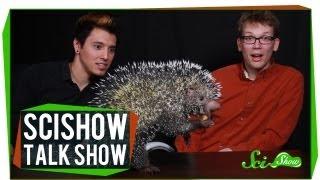 Download Hank and Michael Meet an Alien: SciShow Talk Show #4 Video