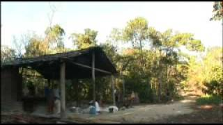 Download INSTITUTIONAL FILM - EC : EUROPEAID - CIVIL SOCIETY - BRESIL Video