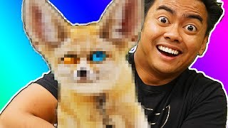 Download Can You Guess That EXOTIC Animal? - Challenge Video