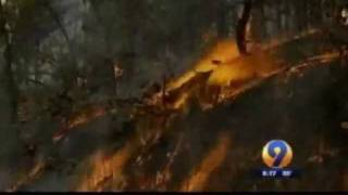 Download NC Forestry Down To 1 Pilot To Fight Wildfires Jun2011 Video