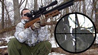 Download Edgun Matador R3 .25 Squirrel Hunting Review Video