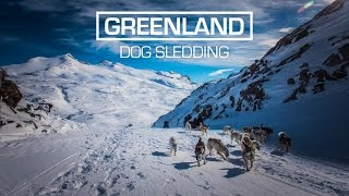 Download Arctic Dog Sledding in East Greenland Video