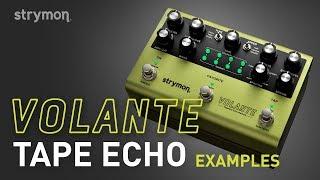 Download Strymon Volante - Tape Echo Examples - Demo Video