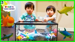 Download Emma and Kate Learn about Sharks and colors while singing Baby Shark Song Video