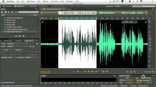 Download Adobe Audition CS6 - How to Remove Noise from a Clip Video