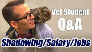 Download Vet Student Q&A - Different Jobs, Career Salary, and Shadowing a Veterinarian Video