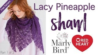 Download How to Crochet Lacy Pineapple Shawl Part 1 of 2 Video