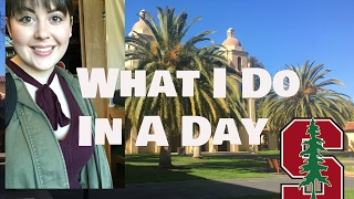 Download A Day In The Life Of A Stanford Student Video