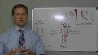 Download Shin Splints - Cause and Treatment Video