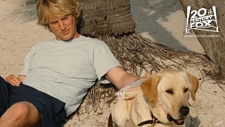 Download Marley & Me | The Greatest Gift | 20th Century FOX Video