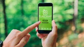 Download PlantSnap: The App that Identifies Plants in an Instant Video