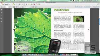Download InDesign Grundlagen - Dokument für den Druck vorbereiten Video