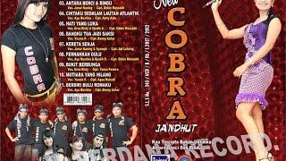 Download Kau Tercipta Bukan Untukku - New Cobra Tembang Kenangan [ Official ] Video