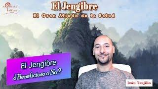Download El Jengibre ¿Bueno o Malo para Nuestra Salud? Video