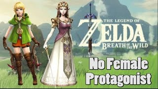 Download Link Confirmed To Be White and Male in Zelda, Breath of the Wild Video