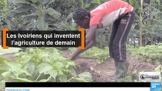 Download Les Ivoiriens qui inventent l'agriculture de demain Video