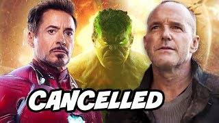 Download Why Marvel Cancelled Agents of SHIELD - Avengers Endgame Crossover Breakdown Video