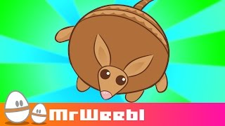 Download Armadillo : animated music video : MrWeebl Video