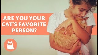 Download Are You Your Cat's Favorite Person? Discover! Video