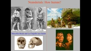 Download CARTA: The Evolution of Human Nutrition Video