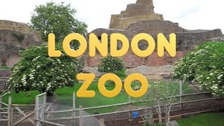 Download London 28 - ZSL London Zoo Video