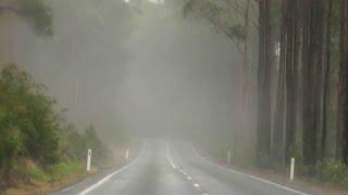 Download ROAD TRIP | Bangalore - Bandipur - Ooty - Coonoor Video