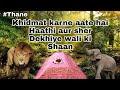 Download Khidmat karne aate hai haathi aur sher | Huzuri Shah dargah Thane | wagle estate dargah | #smrqvlog. Video
