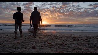 Download ″الصيد الشبحي″ يدمر بيئتنا البحرية Video