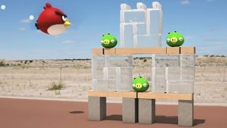 Download Life Size Angry Birds Video