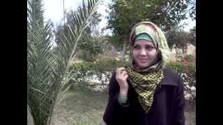 Download DFOP Interview With Typical Gaza University Student Video