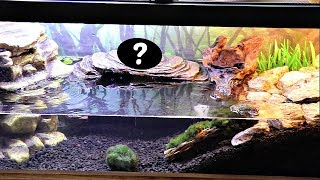 Download Meet Our New Pet!! Video