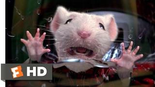Download Stuart Little (1999) - Stuck in the Washing Machine Scene (2/10) | Movieclips Video