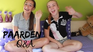 Download Paarden Q&A | PimAbigail Video