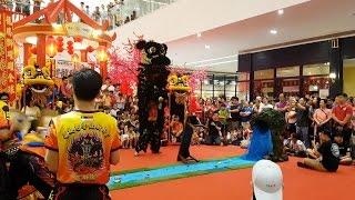 Download World Dragon & Lion Dance 2017 (Malaysia) Qing by BSMM 世界龙狮节(马来西亚站)傳統青 - 馬六甲紅新月會 (4K UHD) Video