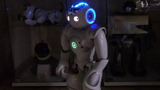 Download NAO ROBOTER - DEUTSCHE SPRACHAUSGABE! Video