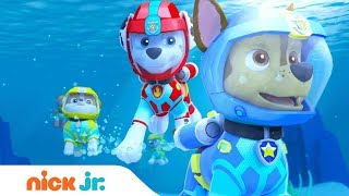 Download PAW Patrol | 'Sea Patrol: The Next Wave' Official Trailer | Full Episode Sept. 8 on Nickelodeon Video