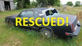 Download ABANDONED Cutlass Found in a field! LETS RESCUE! Video