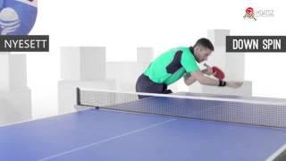 Download ITTF asztalitenisz oktatófilm szerva alapok magyarul Video