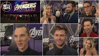 Download Avengers: Endgame World Premiere Cast Interviews Video