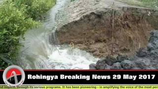 Download #Rohingya #Breaking News 29 May 2017 #Cyclone #Mora Starts Now Video