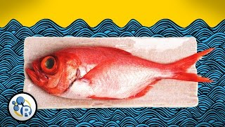 Download How To Make Fish Less Fishy (Chemistry Life Hacks) Video