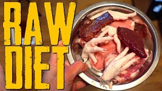 Download RAW Diet Full Day of Eating Cane Corso #canecorso Video