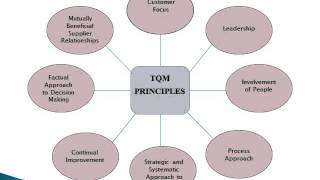 Download Total Quality Management Video
