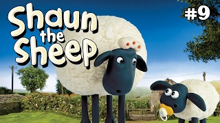 Download Shaun the Sheep - Wash Day S1E8 (DVDRip XvID) Video
