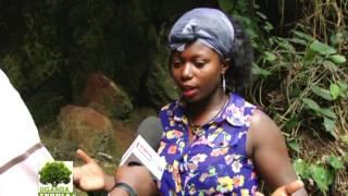 Download UGANDA EKKULA: Ebyafaayo by'Amabeere ga Nyina Mwiru Part B Video