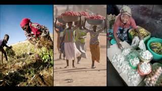 Download 2030- SDG 2- Zero Hunger- Ted talks Video