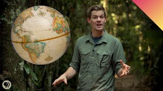 Download Why Do More Species Live Near the Equator? Video